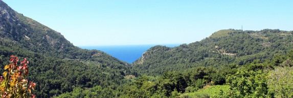 close to ANEMA hotel in Samos island