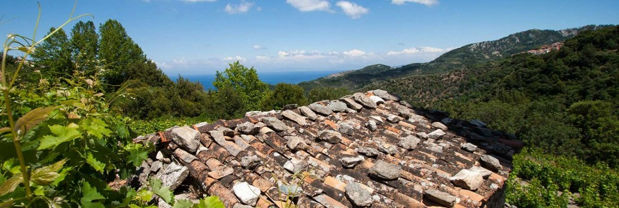 feel-the-natural-holiday-in-samos-hotels